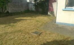 Tranquill back garden in Bray